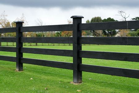 Through Post and Rail Fence